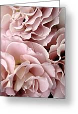 Pink Petal Profusion Greeting Card