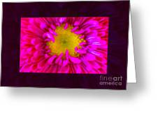 Pink Petals Envelop A Yellow Center An Abstract Flower Painting Greeting Card