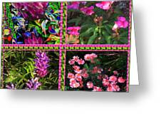 Pink Purple Flowers Captured At The Riverside Ridge At Oakville Ontario Canada Collage Beautiful     Greeting Card