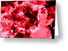 Pink Red Flower Greeting Card