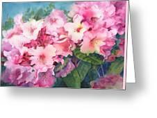 Pink Rhodies On Demand Greeting Card