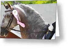 Pink Ribboned Grey Greeting Card
