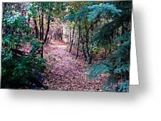 Pink Road Greeting Card