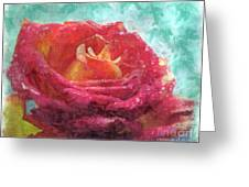Pink Rose - Digital Paint II Greeting Card