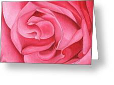 Pink Rose 14-1 Greeting Card by William Killen