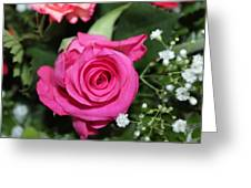 Pink Rose Adds Colour Greeting Card