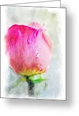 Pink Rose Bud - Digital Paint II Greeting Card