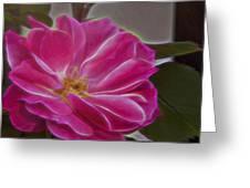 Pink Rose Digital Art 2 Greeting Card