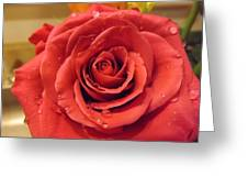 Pink Rose Drops Greeting Card
