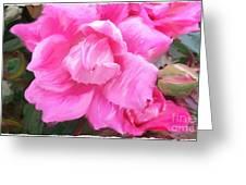 Pink Rose Painting  Greeting Card