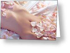 Pink Rose Petals On Nude Woman Body Greeting Card