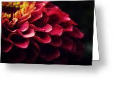 Pink Secret Greeting Card