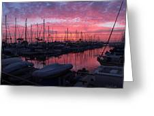 Pink Summer Sunset  Greeting Card