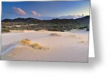 Pink Sunset At The Desert Greeting Card