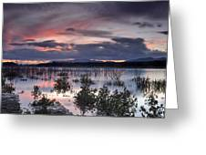 Pink Sunset At The Lake Greeting Card