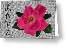 Pink Tea Rose Love Greeting Card