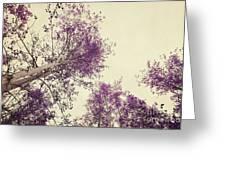 Pink Trees Greeting Card