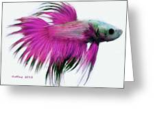Pink Tropical Fish Greeting Card