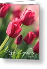 Pink Tulip Dream Birthday Card Greeting Card
