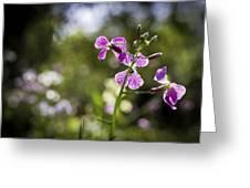 Pink Veins Greeting Card