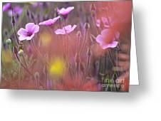 Pink Wild Geranium Greeting Card