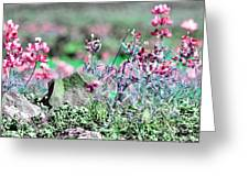 Pink Wildflowers Greeting Card