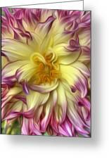 Pink Yellow Dahlia Greeting Card