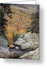 Pinkham Notch - Fm000105 Greeting Card
