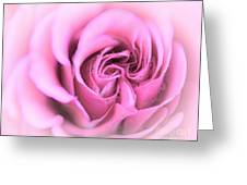 Pinkness Greeting Card