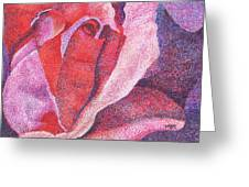 Pinkrose#5-2 Greeting Card by William Killen
