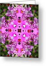 Pinks- Oh My Greeting Card
