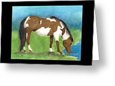 Pinto Mustang Horse Mare Farm Ranch Animal Art Greeting Card
