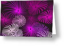 Pinwheel Fun Greeting Card