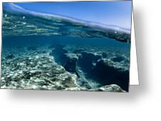 Pipe Reef. Greeting Card
