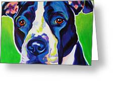 Pit Bull Sadie Painting By Alicia Vannoy Call