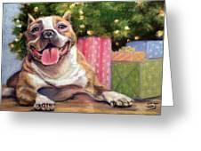 Pitbull Christmas Greeting Card