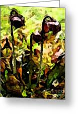 Pitcher Plant Abstraction Greeting Card