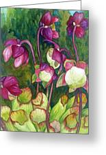 Pitcher Plant Flowers Greeting Card