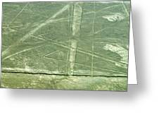 Plains Of Nazca - Spider Greeting Card