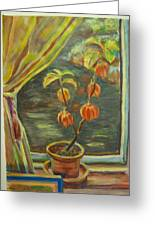 Plant In A Window Greeting Card by Ellen Howell
