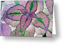 Plant Pattern - Photopower 1211 Greeting Card