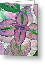Plant Pattern - Photopower 1212 Greeting Card