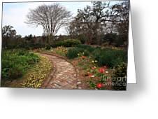 Plantation Garden Greeting Card