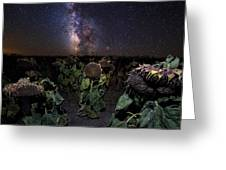 Plants Vs Milky Way Greeting Card