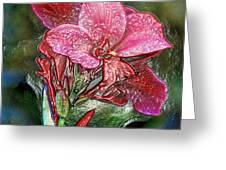 Plastic Wrapped Pink Flower By Diana Sainz Greeting Card
