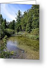 Platte River Beauty Greeting Card