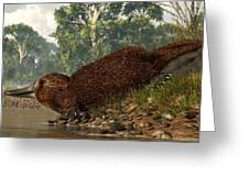 Platypus On The Shore Greeting Card