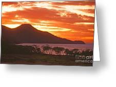 Playa Matapalo Costa Rica Greeting Card
