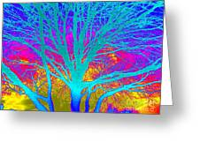 Playful Colors 4 Greeting Card