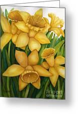 Playful Daffodils Greeting Card by Vikki Wicks